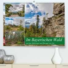 Christian Haidl: Im Bayerischen Wald auf dem Mühlriegel und Ödriegel von Eck (Premium, hochwertiger DIN A2 Wandkalender 2021, Kunstdruck in Hochglanz), Kalender