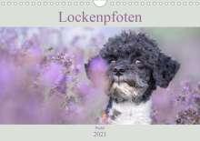 Sabine Böke-Bergau: Lockenpfoten 2021 (Wandkalender 2021 DIN A4 quer), Kalender