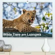 Bruno Pohl: Wilde Tiere am Luangwa (Premium, hochwertiger DIN A2 Wandkalender 2021, Kunstdruck in Hochglanz), Kalender