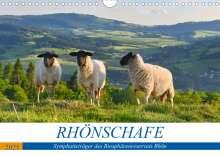 Manfred Hempe: Rhönschafe - Symphatieträger des Biosphärenreservats Rhön (Wandkalender 2021 DIN A4 quer), Kalender