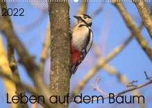 Kevin Andreas Lederle: Leben auf dem Baum (Wandkalender 2022 DIN A2 quer), Kalender