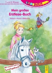 Michaela Holzinger: LESEZUG/1.-2. Klasse: Mein großes Erstlese-Buch - Katzen, Hexen, Ballerinas, Buch
