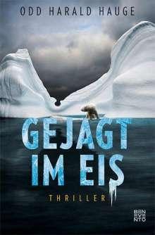 Odd Harald Hauge: Gejagt im Eis, Buch