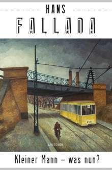 Hans Fallada: Kleiner Mann - was nun? (Roman), Buch