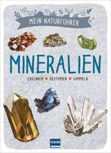 Laurence Denis: Mein Naturführer - Mineralien, Buch