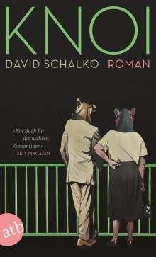 David Schalko: Knoi, Buch