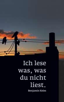 Benjamin Kelm: Ich lese was, was du nicht liest., Buch