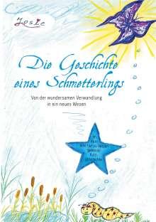 Karin Schäfer: Die Geschichte eines Schmetterlings, Buch