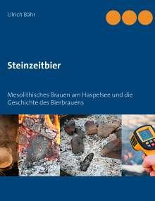 Ulrich Bähr: Steinzeitbier, Buch