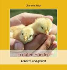 Charlotte Feldt: In guten Händen, Buch