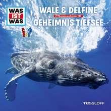 Manfred Baur: Was ist was Folge 13: Wale & Delfine/ Geheimnisse der Tiefsee, CD