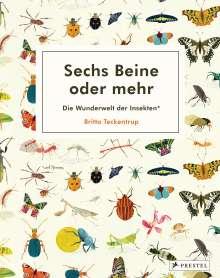 Britta Teckentrup: Sechs Beine oder mehr - Die Wunderwelt der Insekten, Buch