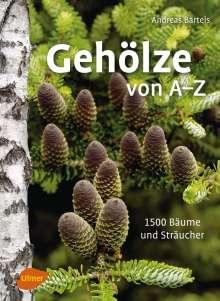 Andreas Bärtels: Gehölze von A -Z, Buch