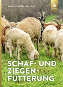Gerhard Bellof: Schaf- und Ziegenfütterung, Buch