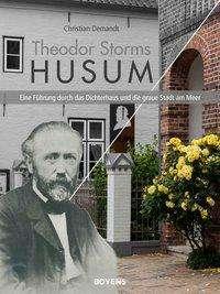 Christian Demandt: Theodor Storms Husum, Buch