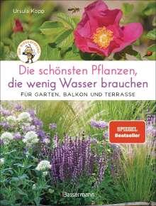 Ursula Kopp: Die schönsten Pflanzen, die wenig Wasser brauchen für Garten, Balkon und Terrasse - 66 trockenheitsverträgliche Stauden, Sträucher, Gräser und Blumen, die heiße Sommer garantiert überleben, Buch