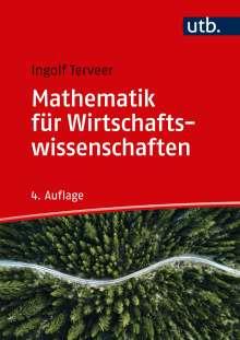 Ingolf Terveer: Mathematik für Wirtschaftswissenschaften, Buch