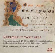 "Gregorianischer Choral  ""Refloruit Caro Mea"", CD"