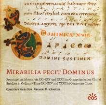 Mirabilia Fecit Dominus, CD