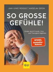 Anselm Grün: So große Gefühle!, Buch