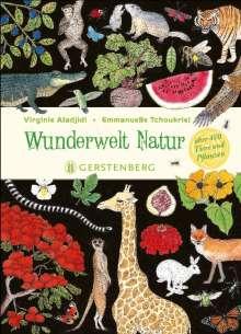 Virginie Aladjidi: Wunderwelt Natur, Buch