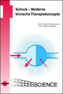 Heinrich Volker Groesdonk: Schock - Moderne klinische Therapiekonzepte, Buch