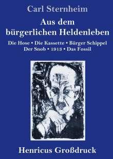 Carl Sternheim: Aus dem bürgerlichen Heldenleben (Großdruck), Buch