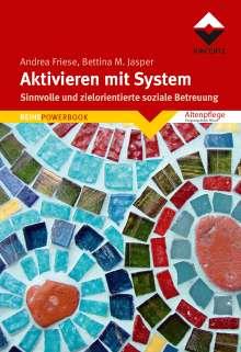Andrea Friese: Aktivieren mit System, Buch