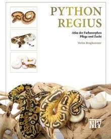 Stefan Broghammer: Python regius, Buch