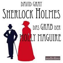 David Gray: Sherlock Holmes, 2 CDs