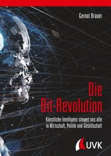 Gernot Brauer: Die Bit-Revolution, Buch