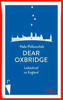 Nele Pollatschek: Dear Oxbridge, Buch
