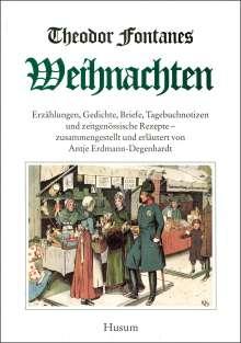 Theodor Fontane: Theodor Fontanes Weihnachten, Buch