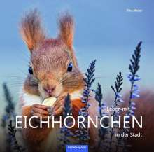 Tine Meier: Leben mit Eichhörnchen in der Stadt, Buch