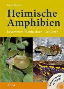 Dieter Glandt: Heimische Amphibien, Buch