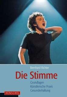 Bernhard Richter: Die Stimme, Buch
