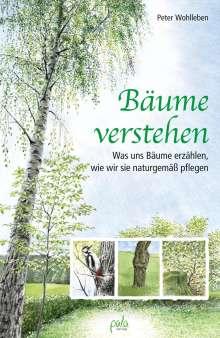 Peter Wohlleben: Bäume verstehen, Buch