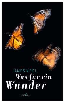 James Noël: Was für ein Wunder, Buch