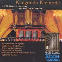 Historische Orgeln im Bistum Münster - Klingende Kleinode, CD