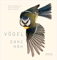 Asa Ottosson: Vögel ganz nah, Buch