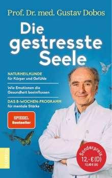 Gustav Dobos: Die gestresste Seele, Buch