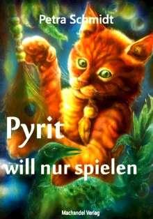 Petra Schmidt: Pyrit will nur spielen, Buch
