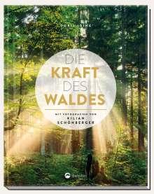 Doris Iding: Die Kraft des Waldes, Buch
