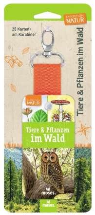 Bärbel Oftring: Expedition Natur - Tiere und Pflanzen im Wald, Buch