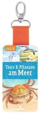 Bärbel Oftring: Expedition Natur - Fächer Tiere & Pflanzen am Meer, Buch